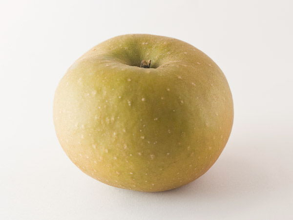 Apple suitable for cider: Udare marroi